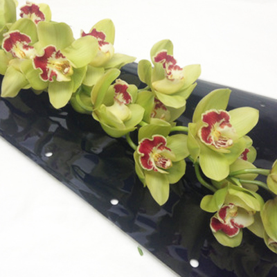 Cymbidium Fiona Wholesale Florist Open to the Public, DIY Weddings and Events