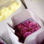 nj bridal bouquets