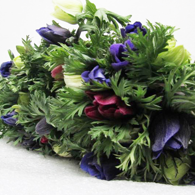 Anemone Marianne Rainbow for Weddings, Events and DIY Brides. Wedding and Event Florist in Fairfield, NJ 07004