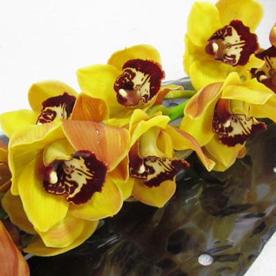 Cymbidium Orange Favorite Wholesale Florist Open to the Public, DIY Weddings and Events