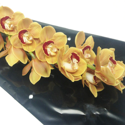 Cymbidium Orange Mystery Wholesale and Retail Florist Open to the Public, DIY Weddings and Events